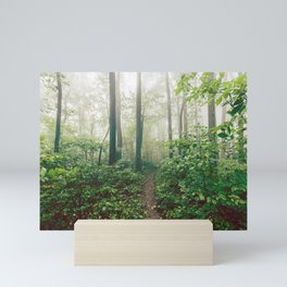 Smoky Mountain Forest Adventure - National Park Nature Photography Mini Art Print