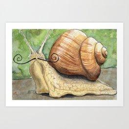 Snail 'Stache Art Print