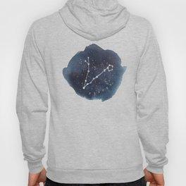 pisces constellation zodiac Hoody