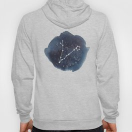 pisces constellation zodiac Hoody