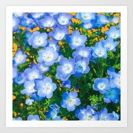 BABY BLUE EYES FLORAL GARDEN ART Art Print