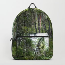Home of the ancient ones Backpack