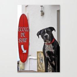 Surf Dog Canvas Print
