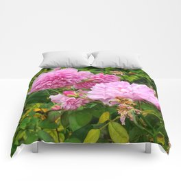 Light Pink Roses Comforters
