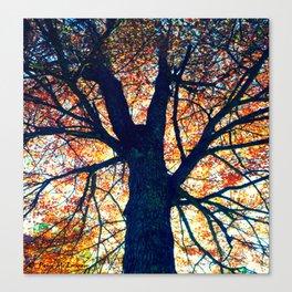 Autumn Leaves - Shambhala Centre Canvas Print