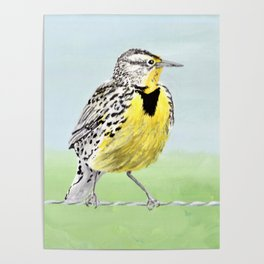 Wyoming Meadowlark Bird Art Poster