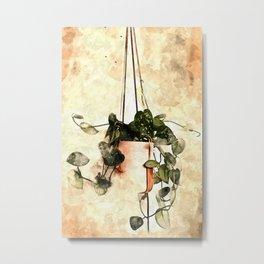 Hanging Money Plant #watercolor Metal Print