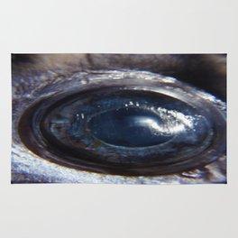 Eye of a swordfish Rug