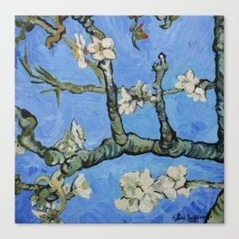 Flowering almond branches oil painting Canvas Print