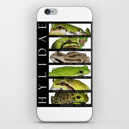 Tree frogs of North America - Hylidae iPhone Skin