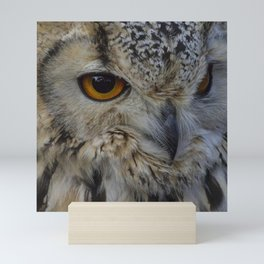 Eurasian eagle-owl, wild bird Mini Art Print