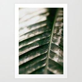 Texture Art Print
