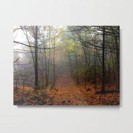 Bear Mountain, New York Metal Print