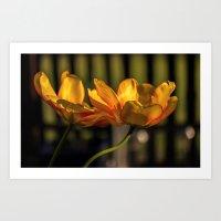 tulip Art Prints featuring tulip by Karl-Heinz Lüpke