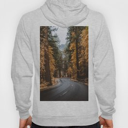 Autumn Forest Road II Hoody