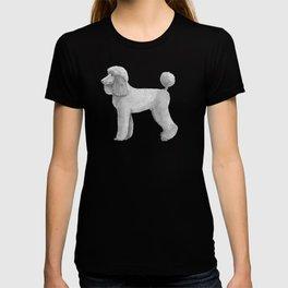 Poodle - standard - abricot T-shirt