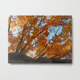 Fiery Leaves 2012 Metal Print