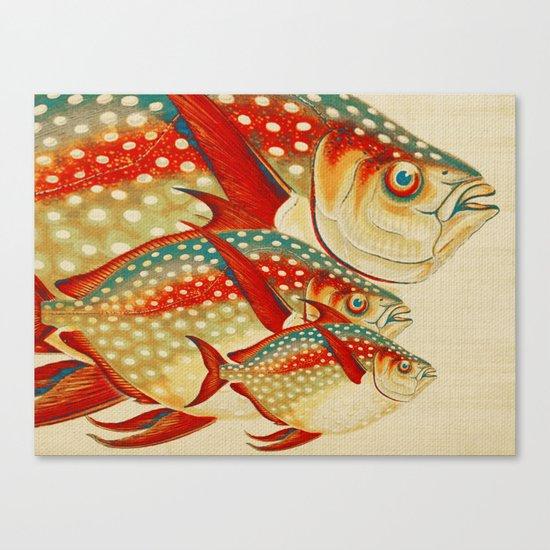 Fish Classic Designs 1 Canvas Print