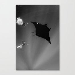 Manta and Divers Canvas Print