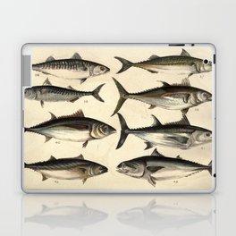 Vintage Illustration of Tunas, Mackerels & Bonitas Laptop & iPad Skin