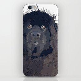 Newfoundland Dog iPhone Skin