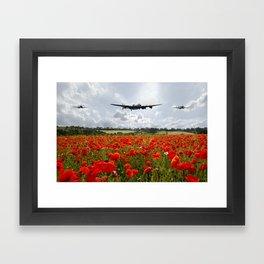 Poppy Fly Past Framed Art Print