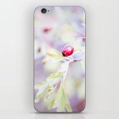 Majoletas iPhone & iPod Skin