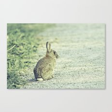 Wild Welsh Rabbit. Canvas Print
