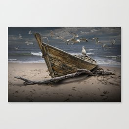 Gulls Flying over a Shipwrecked Wooden Boat Canvas Print
