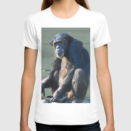 Sitting Alone T-shirt