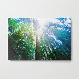 Flora Lumina Metal Print