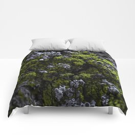 Barnacle Woodlands Comforters