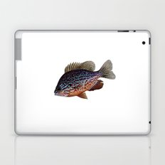 pumkinseed Laptop & iPad Skin