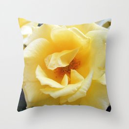 Afternoon, Rose Throw Pillow