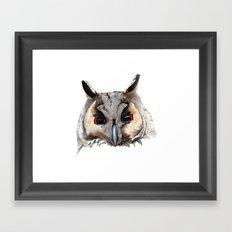 Long Eared Owl Framed Art Print