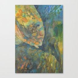 fesh Canvas Print