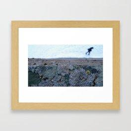 Glacier Museum, Fjærland Framed Art Print