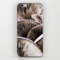 mushrooms iPhone & iPod Skins featuring Mushrooms by Kathy Dewar