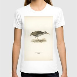 Great black-backed gull (Larus Marinus) illustrated by the von Wright brothers T-shirt