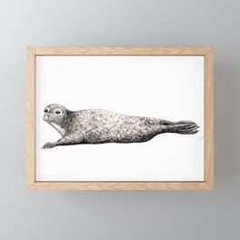 Harbour Seal Framed Mini Art Print