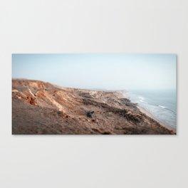 Moss ∆ Canvas Print