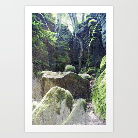 natura 3 Art Print