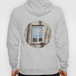 Window Hoody