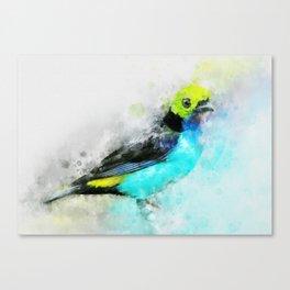 Waterolour blue bird painting illustration blue navy yellow artsy animal nature Canvas Print