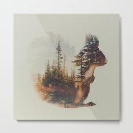 Norwegian Woods: The Squirrel Metal Print