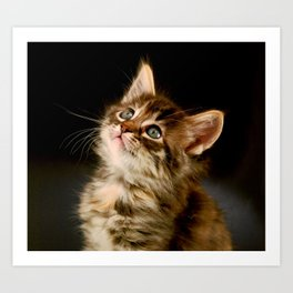 Meow Art Print