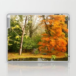 Willow in Autumn colors Laptop & iPad Skin