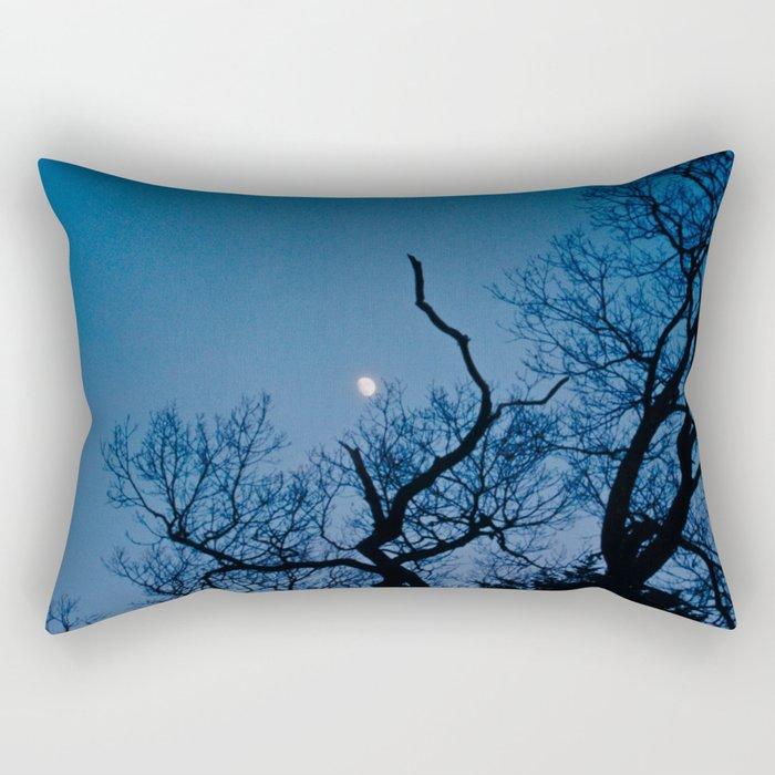 Catch the Moon Rectangular Pillow