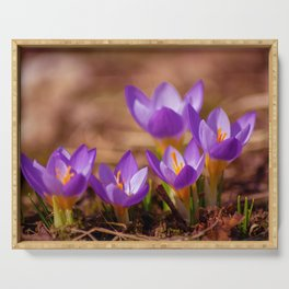 The crocus family Serving Tray