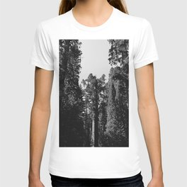Sequoia National Park XII T-shirt